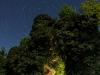 Stra trails - Vinica01